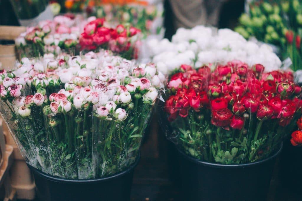 french riviera - Flower Market