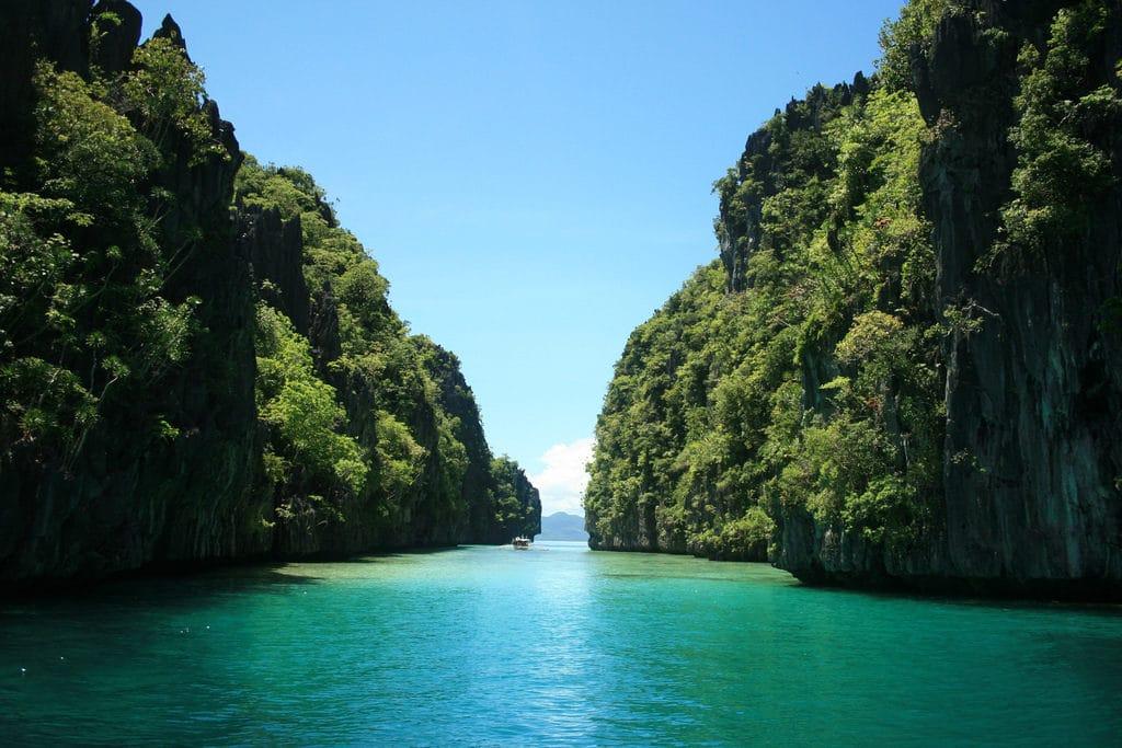 Palawan Island - blooming mountains