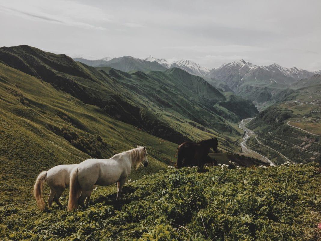georgia, caucasus mountains, hiking, travel destinations, trekbible