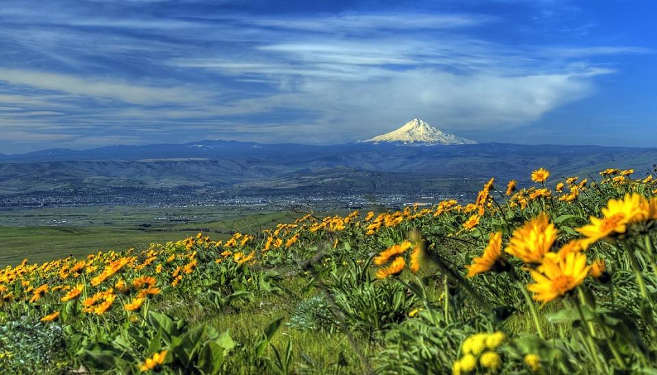 18 Best Things To Do In Portland Oregon Trekbible