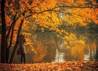 news, travel inspiration, fall, New England