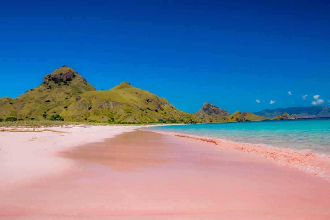Pink Beach Of Komodo Indonesia