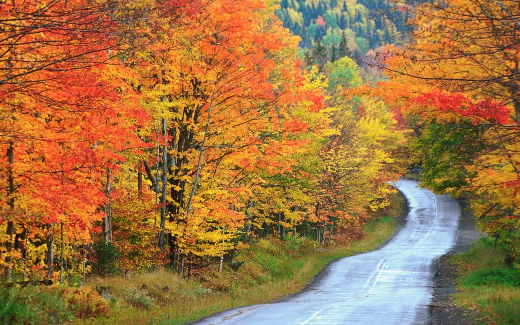trekbible, travel, new england, fall, maine, acadia, autumn, foliage, national parks, leaves, september,travel, road trips, adventure