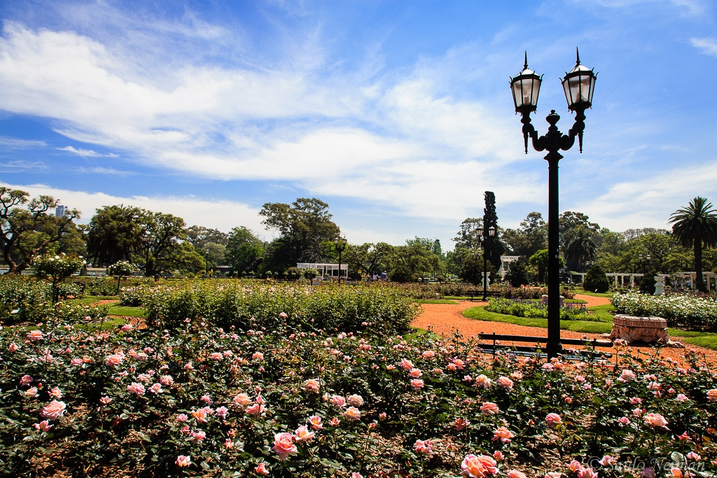 things to do in buenos aires - Smell the Roses