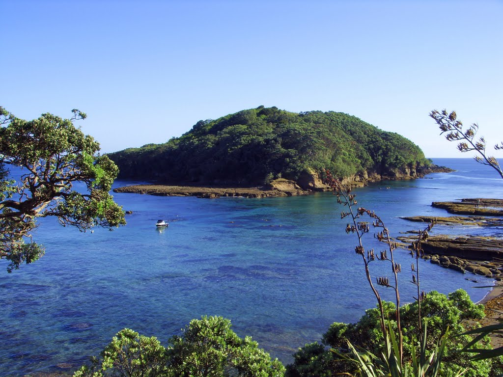 things to do in auckland - Goat Island