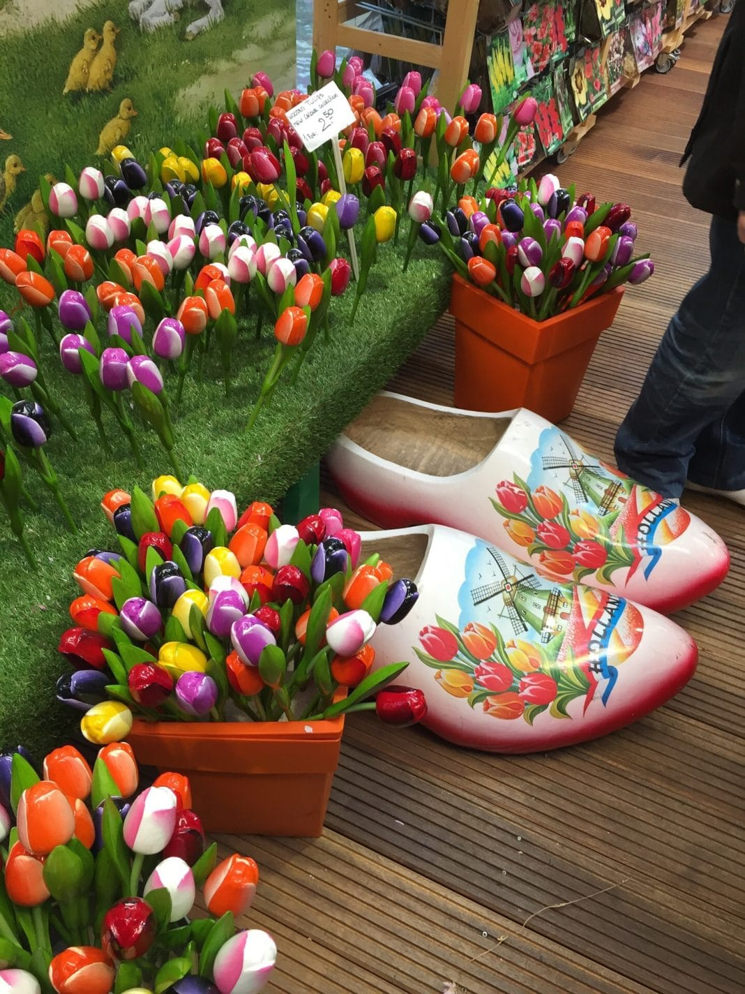 things to do in amsterdam - tulips