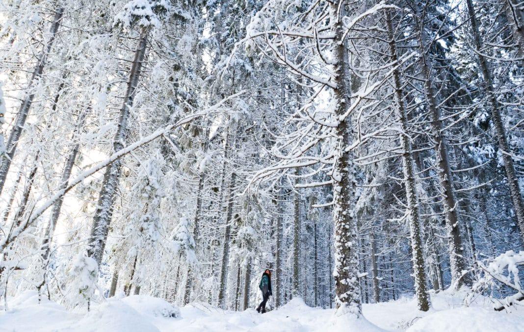 visit Finland