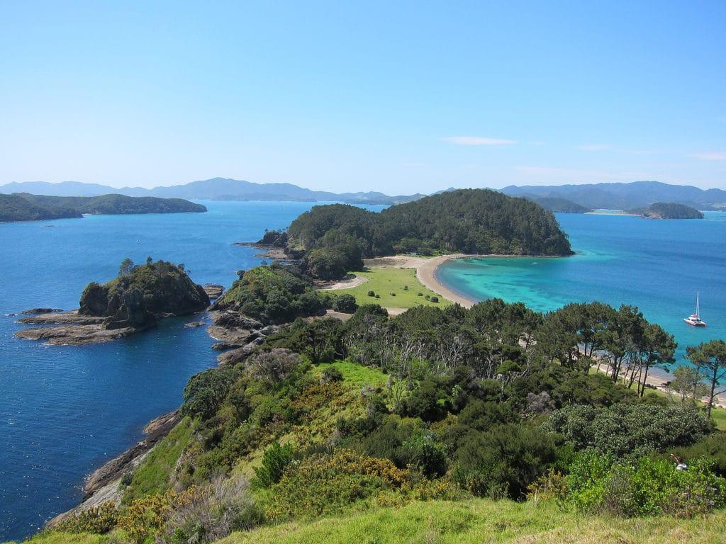 New Zealand Nature Handiwork