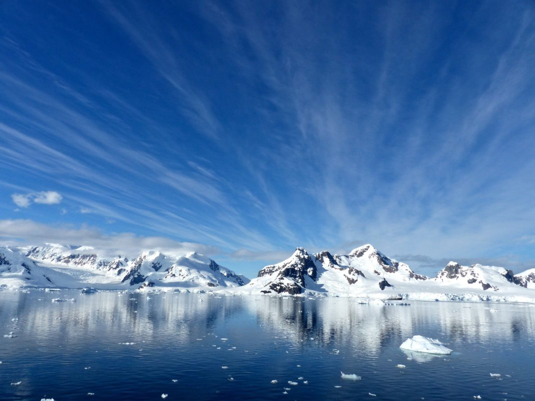 Antarctica Named A Number One Travel Destination Trekbible - 12 things to see and do in antarctica