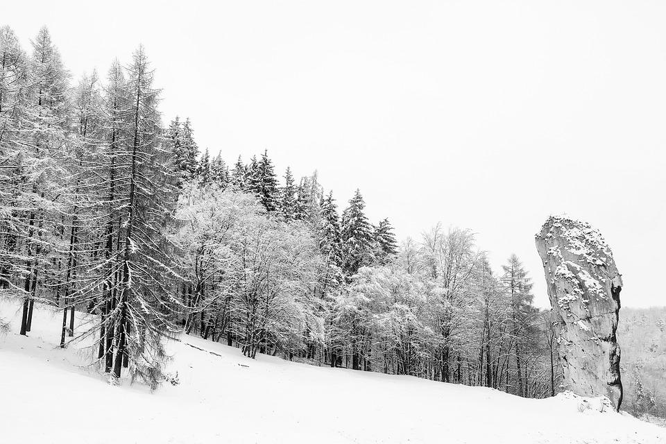 Poland - Winter traveler