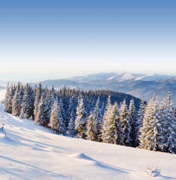 vermont ski resorts, ski Vermont, vermont ski areas, ski resorts in Vermont, vermont skiing, Vermont, vermont ski mountains, ski areas, vermont ski, ski vt, ski resorts Vermont, skiing Vermont, vt ski resorts, skivermont, ski resorts near Vermont, ski, where to ski in Vermont, vermont ski slopes, vermont snowboarding, ski in Vermont, ski hills, ski places in Vermont, places to ski in Vermont, vermont ski vacations, ski resort in Vermont, vermont snow resorts, vermont ski resorts map, vt skiing, vt ski areas, ski resort vermont usa, northeast ski resorts, ski resort Vermont, sking Vermont, skivt, skiing in vt, vermont skiing resorts, vermount, ski slopes in Vermont, ski areas Vermont, skiing resorts in Vermont, vermont ski area, vermont sky, vermont ski resorts list, vermont ski map, burlington vt ski resorts, vermont snowboarding mountains, skiing vt, vermont ski trip, snowboarding in Vermont, vt ski, ski resorts near burlington vt, best vermont ski resorts, skivermont.com, vermont ski areas association, vermont ski area association, skivermont com, ski resort vt, vermont winter skiing, map of vermont ski areas, vermont snow skiing resorts, vermont mountains ski, vermont ski locations, vermont skiiing, vsaa, snowboarding Vermont, vermont area, ski resort near montpelier vt, vermont mountain, ski in vt, ski area Vermont, mountains to ski in Vermont, ski vacations Vermont, ski vacations in Vermont, ski area in Vermont, ski mountains Vermont, vermont ski vacation, ski areas vt, ski lodges in Vermont, snow skiing in Vermont, vermont ski association, vermont ski towns, vermont.com, ski southern Vermont, ski mountains near burlington vt, ski areas near burlington vt, vermont snowboarding resorts, ski mountains in vt, ski and snowboard resorts, vermont ski mountains map, best skiing in vermont
