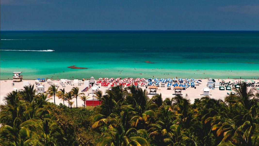 surfcomber, kimpton surfcomber, surfcomber Miami, kimpton surfcomber hotel, surfcomber hotel, kimpton surfcomber Miami, surfcomber hotel Miami, kimpton hotel Miami, miami beach hotels, surfcomber miami beach, kimpton surfcomber hotel Miami, 1717 collins ave, the surfcomber Miami, surfcomber south beach, kimpton Miami, south beach hotels, surfcomber south beach florida, kimpton surfcomber miami south beach, surfcomber hotel miami south beach, surfcomber miami fl, kimpton hotels, kimpton surfcomber hotel miami beach fl, surfcomber hotel south beach fl, surfcomber miami beach address, surfcomber miami south beach, the surfcomber hotel Miami, surfcomber hotel south beach miami florida, kimpton hotel miami beach, hotels in miami beach florida, surfcomber hotel south beach florida, kimpton surfcomber hotel south beach, kimpton miami beach, kimpton surfcomber south beach, hotel surfcomber, doubletree surfcomber, surfcomber hotel south beach, kimpton south beach, the surfcomber hotel south beach, south beach, kimpton hotel south beach, surfcomber hotel reviews, kimpton florida, beachcomber hotel Miami, 1717 collins ave miami beach, surfcomber hotel miami beach fl, the surfcomber, kimpton hotel miami south beach, the surfcomber miami beach, surf comer, the surfcomber south beach, south beach miami hotels, surfcomber restaurant Miami, kimpton hotels florida, collins ave miami hotels, epic kimpton south beach, beachcomber hotel miami fl, beachcomber miami tripadvisor, surfcomber hotel miami beach, surfcomber miami south beach a kimpton hotel, surfcomber a kimpton hotel, miami surf, surf hotel Miami, the surfcomber hotel, hotels near 33139, surfcomber hotel a kimpton hotel, south beach florida, surfcomber address, beachcomber Miami, hotel surfcomber Miami, best south beach hotels, the beachcomber Miami, kimpton surfcomber hotel reviews, beachcomber hotel miami beach fl, surfcomber restaurant, surfcomber miami reviews, best hotels in Miami, surf miami beach, beachcomber miami be