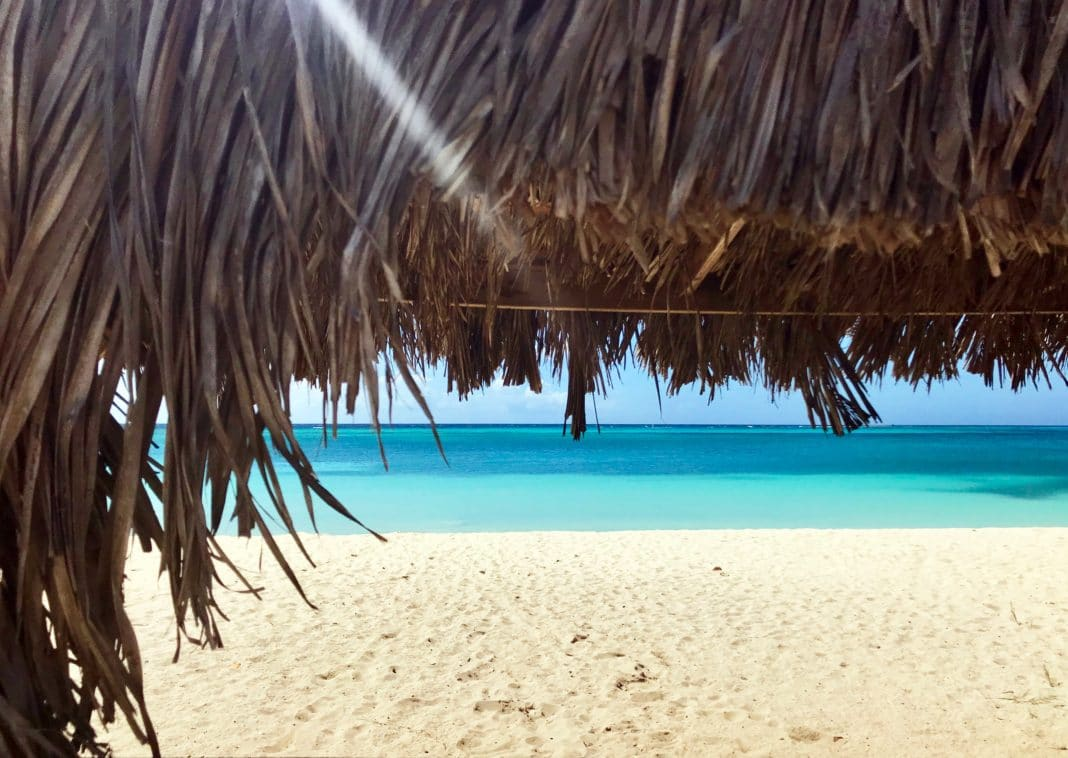 things to do in aruba: your paradise awaits - trekbible