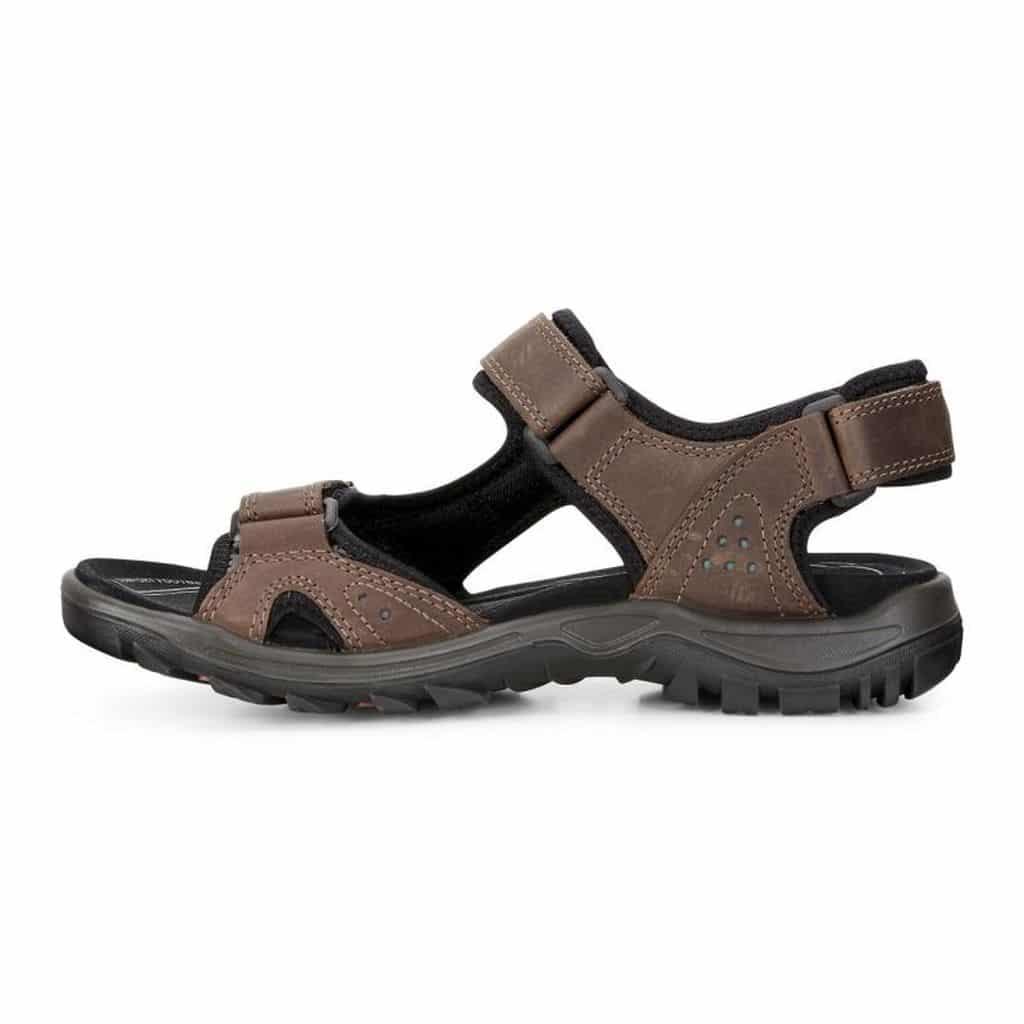 2727c736b229 Men s Ecco Cheja Sandals Review  Great Travel Shoes - trekbible