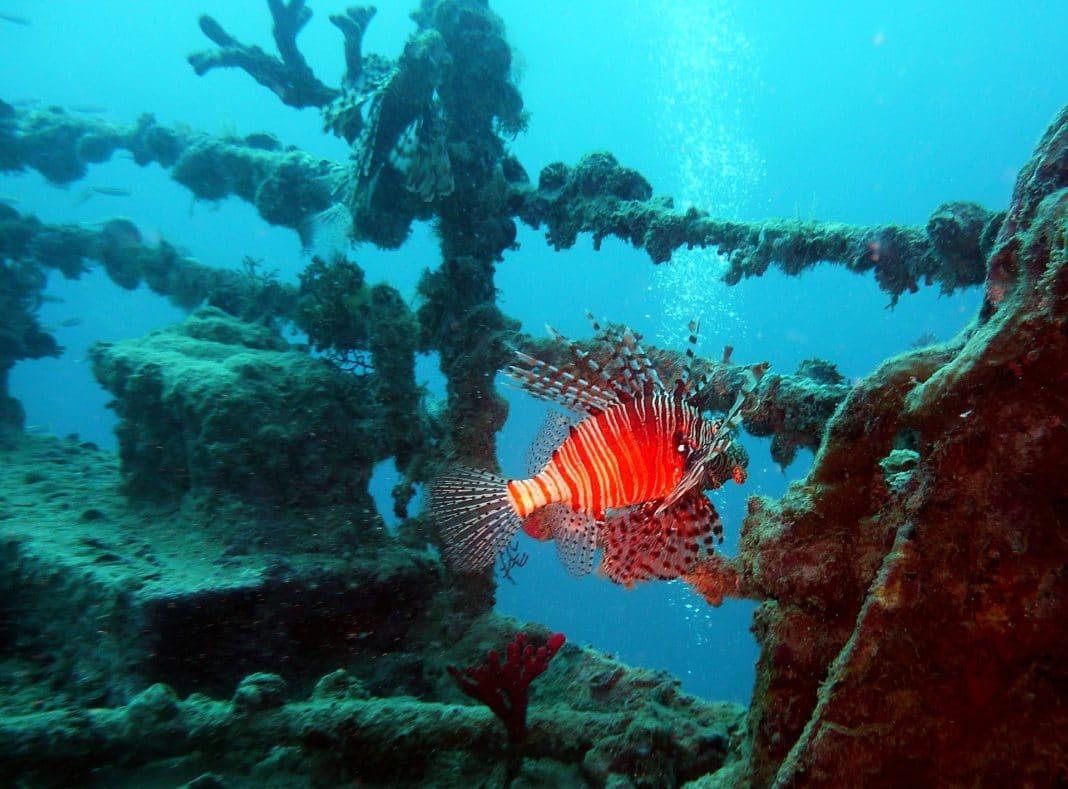 Titanic - undersea tour