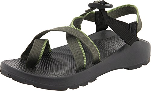 Chaco Men's Z/2 Unsweep
