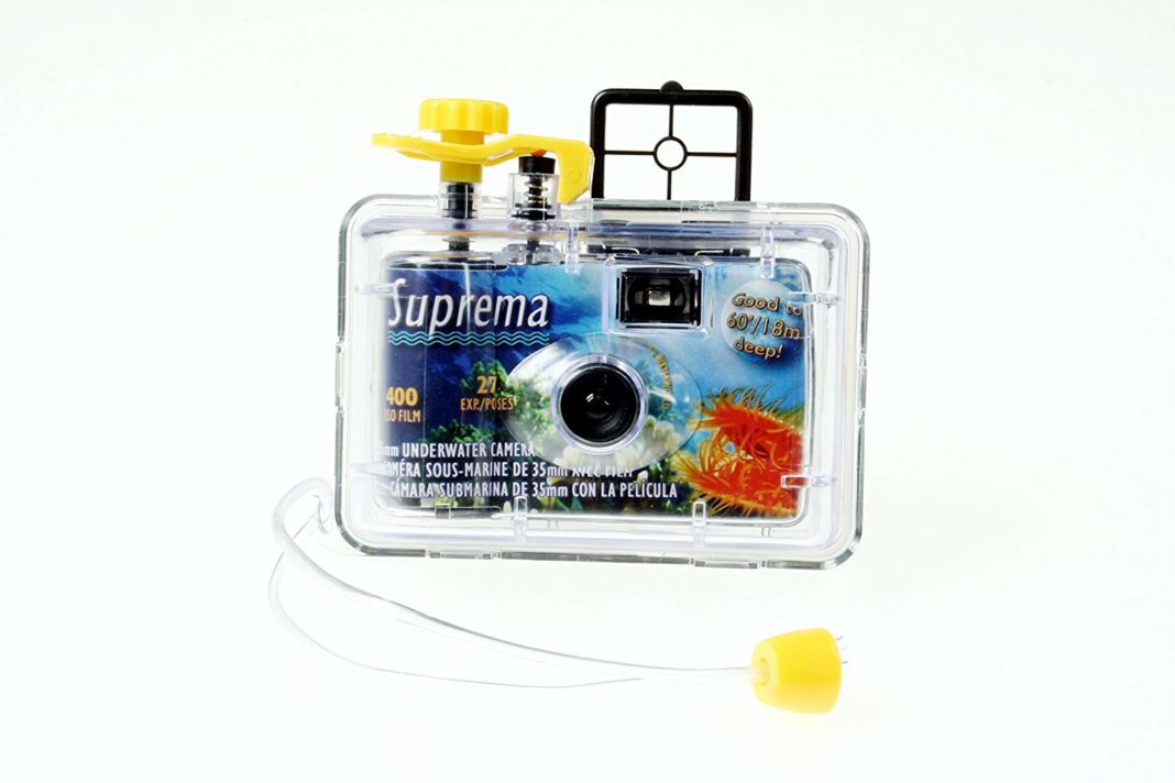 10 best disposable cameras for creative travelers