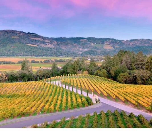 best wineries in Napa