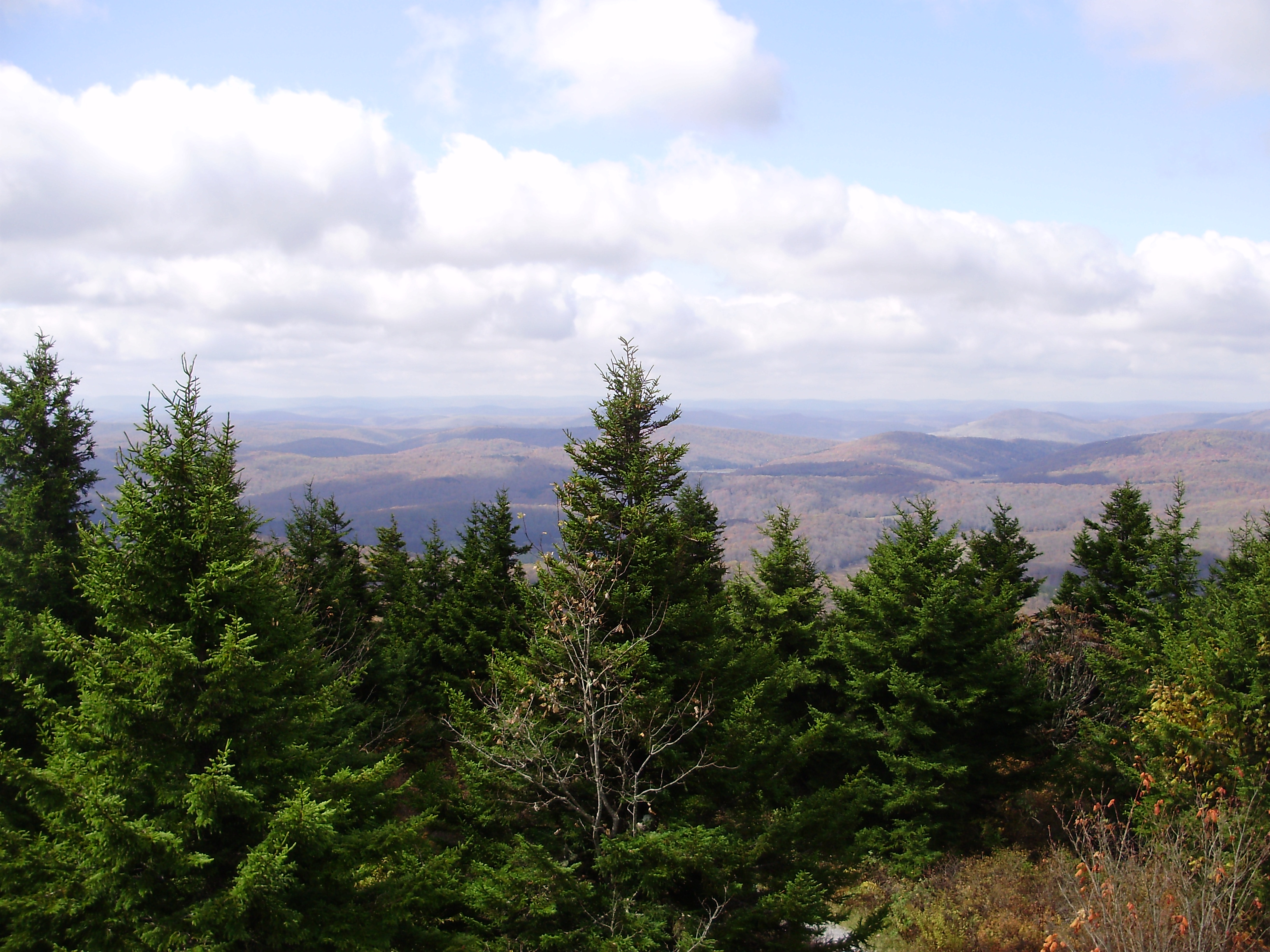 West Virginia mountains - Red Spruce Knob