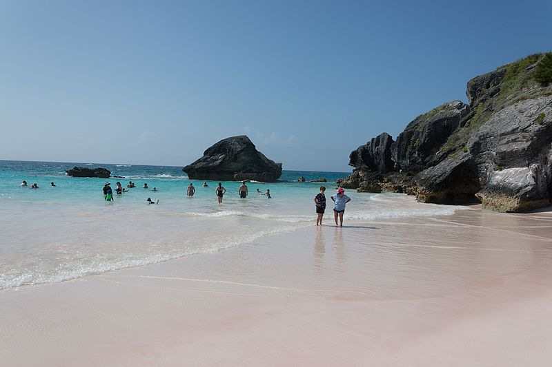 bermuda beaches, best beaches in bermuda, bermuda beaches map, pink sand, pink sand beach bermuda, bermuda pink sand, pink beach bermuda, pink sand beach, beach in bahamas with pink sand, excursions to do in bermuda, bermuda beaches pink, why is bermuda sand pink, beaches in bermuda list, shelly bay bermuda, warwick beach bermuda, somerset long bay beach, somerset long bay bermuda, snorkel park beach vs horseshoe bay, clearwater beach bermuda map, pink sand beach bermuda location, somerset beach bermuda, sandys parish bermuda map, pictures of bermuda pink beaches, shelly beach bermuda, pink beach, horseshoe bay bermuda pink sand, bermuda beach sand, sea glass beach bermuda, horseshoe beach bermuda photos, pink beach east beach bermuda, bermuda topless, horseshoe bay bermuda, pink beach east beach, bermuda nude beach, best pink sand beach in bermuda