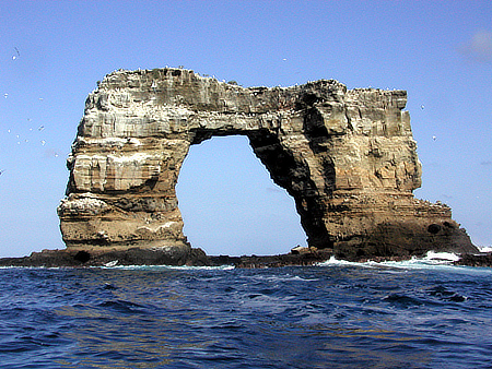 best scuba diving in the world - Darwin's Arch