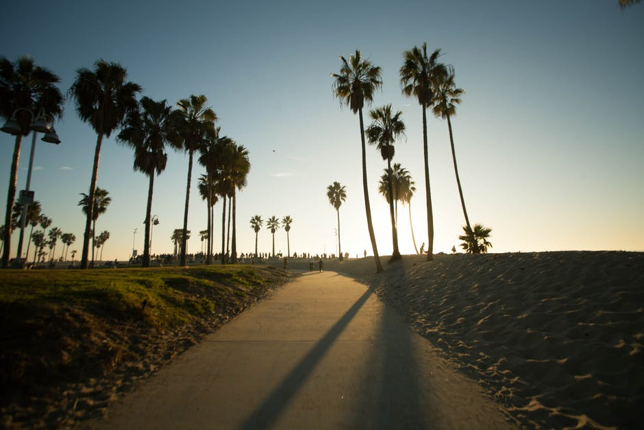 best beaches in Los Angeles - Venice Beach