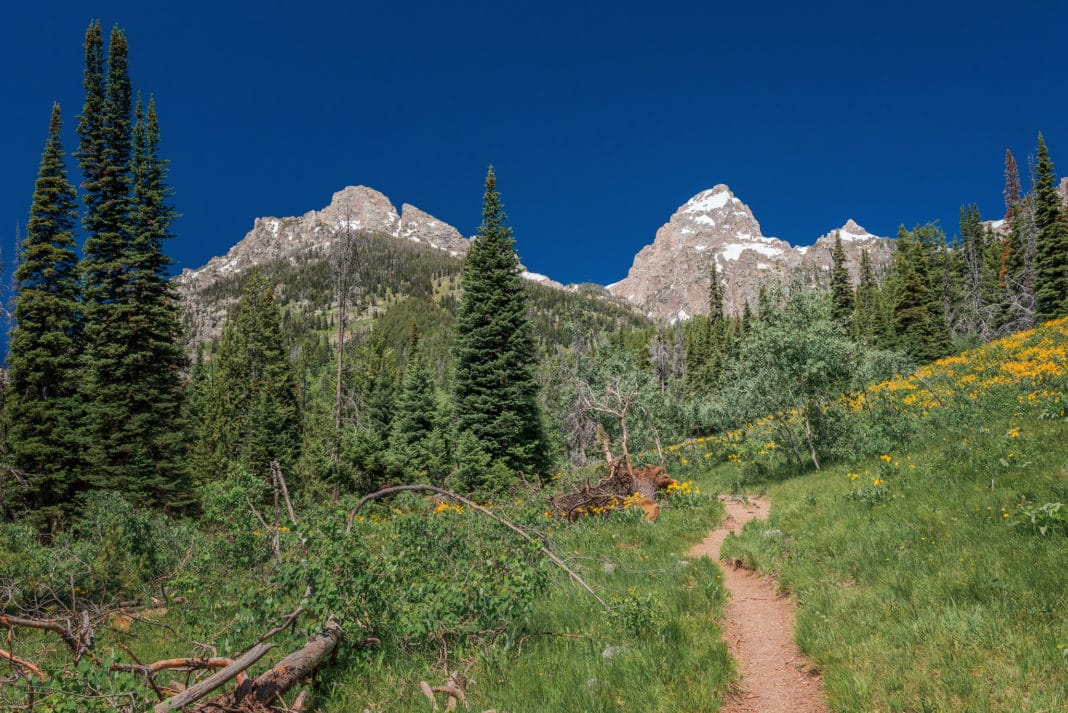 best hiking trails in every state - Wyoming - Taggart Lake Loop