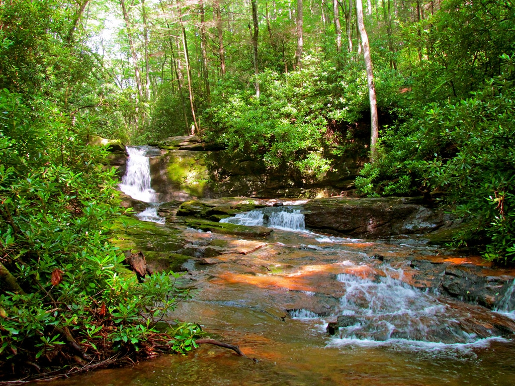 best hiking trails in every state - Georgia - Raven Cliff Falls Trail