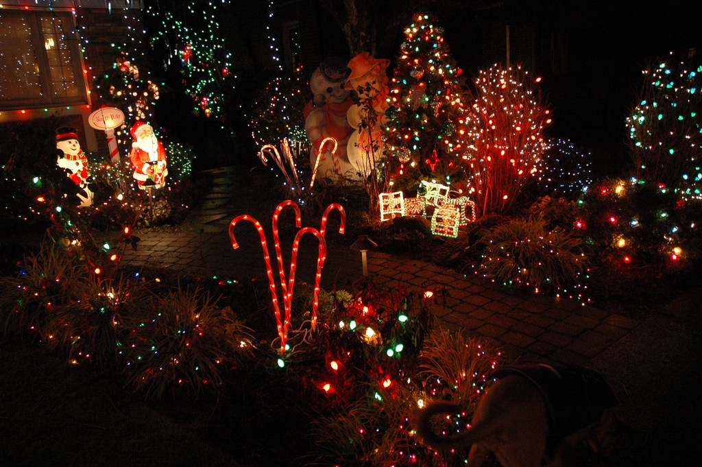 Christmas Light Displays - Washington