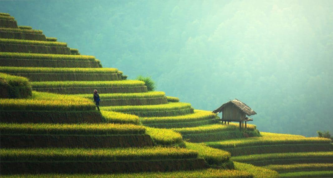 travel, trekbible, adventure, China, travel trends, visit China, asia