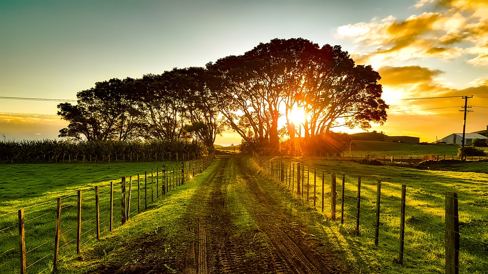 best time to visit new zealand - Wine Country