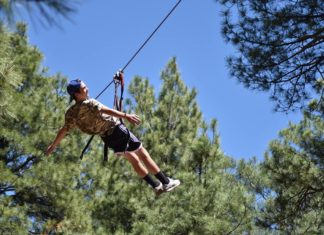 things to do in flagstaff, things to do in flagstaff az, what to do in flagstaff, things to do nearby, flagstaff things to do, flagstaff az things to do, flagstaff attractions, fun things to do in flagstaff, flagstaff activities, what to do in flagstaff az, things to do near flagstaff, what to do with, things to see in flagstaff, adventurous things to do near me, stuff to do in flagstaff, things to do in flagstaff today, flagstaff to do, things to do in arizona, things to do around flagstaff, flagstaff arizona points of interest, what is there to do in flagstaff, top things to do in flagstaff, things to do in downtown flagstaff, to do in flagstaff, things to do near flagstaff az, best things to do in flagstaff, stuff to do near me, downtown flagstaff things to do, flagstaff az activities, things to see in flagstaff az, flagstaff sightseeing, flagstaff az things to see, things to do near my location, flagstaff points of interest, one day trip, visit flagstaff, flagstaff day trip, things to do in flagstaff for free, free things to do in flagstaff, things to do in flagstaff this weekend, free things to do in flagstaff this weekend, fun free things to do in flagstaff az, cheap things to do in flagstaff az, flagstaff things to do free, places to visit in flagstaff, things to do in flagstaff at night, flagstaff az attractions, local things to do in flagstaff, places to go in flagstaff, things to do in flagstaff az in the summer, what to see in flagstaff, things to do in flagstaff with kids, places to see in flagstaff, flagstaff tourist attractions, downtown flagstaff