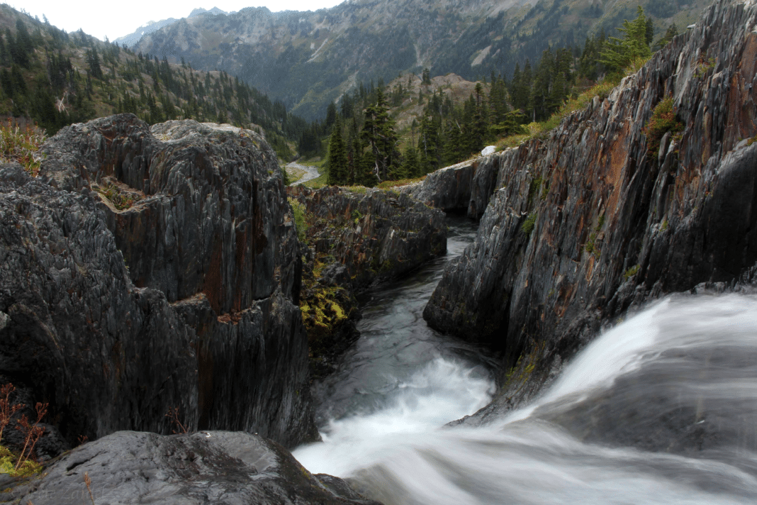 day trips from Seattle - Olympic National Park