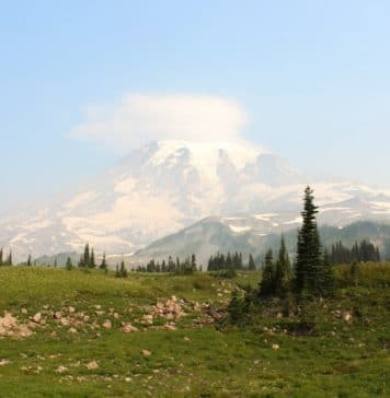 day trips from seattle, seattle day trips, places to visit near seattle, best day trips from seattle, washington day trips, things to do outside of seattle, day trips in washington state, day trips around seattle, places near seattle, washington state day trips, best seattle day trips, places to visit around seattle, day trips in Washington, best day trips outside of seattle, fun day trips washington state, places to see near seattle, places to go near seattle, one day trip from seattle, seattle side trips, best day trips washington state, places to go around seattle, great day trips from seattle, washington day trips from seattle, places near seattle to visit, day trips around seattle Washington, scenic places near seattle, seattle day tours, places to visit in and around seattle, places to visit near seattle wa, seattle area day trips, day trips from seattle wa, best day trips in washington state, day trips from Tacoma, outside seattle, things to do in north seattle, 2 day trips in washington state, places around seattle, day trips from edmonds wa, seattle day trips summer, places close to seattle, best day trips around seattle, western washington day trips, short day trips from seattle, best places to visit near seattle, trips from seattle, seattle day trip ideas, places to see around seattle, scenic places around seattle, ferry trips in seattle, day trips out of seattle, places around seattle to visit, fun day trips from seattle, trips around seattle, best washington day trips, day trips near seattle, wa day trips, short trips from seattle, day trips from seattle in November ,day trips from seattle in winter, places to visit near seattle in April, puget sound day trips, places to visit around seattle wa, quick trips from seattle, seattle and surrounding area things to do, sights around seattle, ferry rides near me, day trips from seattle in fall, what to see near seattle Washington, what to see around seattle, what to do around seattle, what to do in seattle and