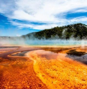 visit Yellowstone