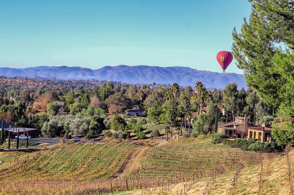 best wineries in Temecula - Callaway Vineyard and Winery