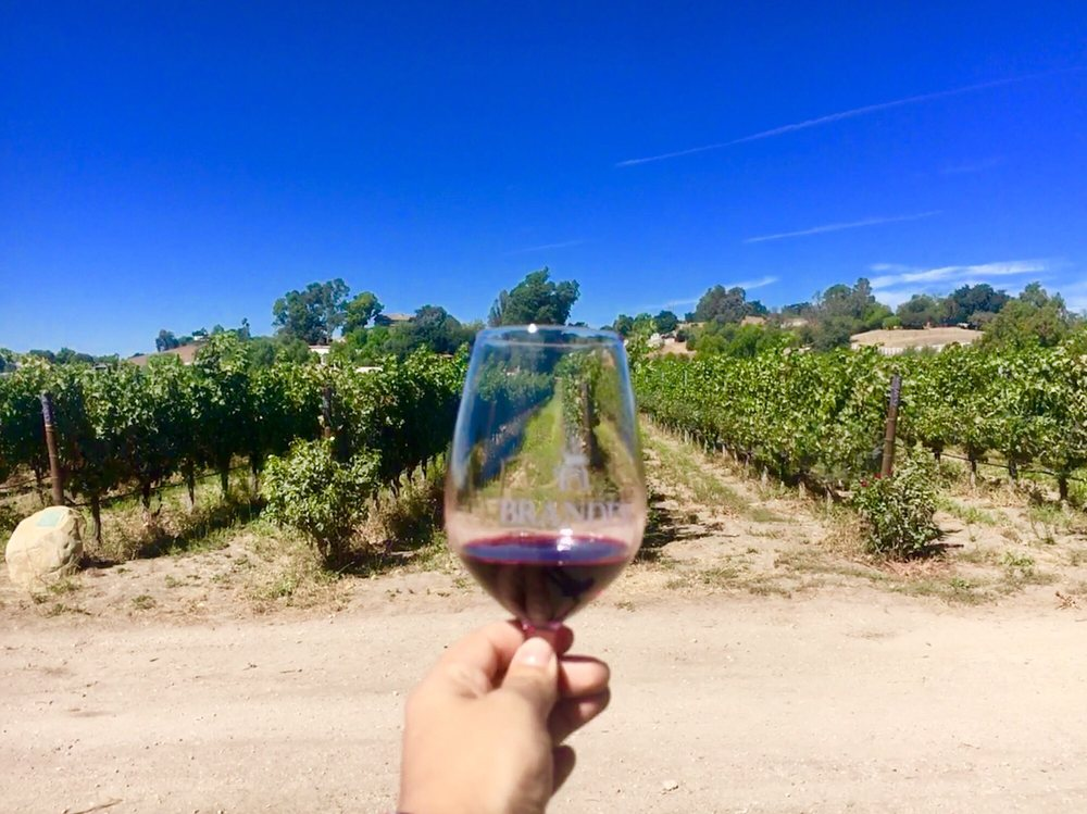 Santa Barbara wineries - Brander Vineyard