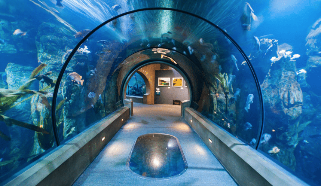 best places to visit in oregon - Coast Aquarium
