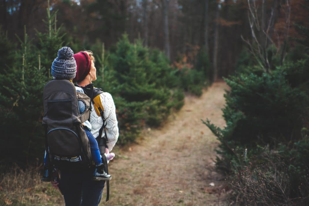 how to hike, hiking for beginners, hiking gear for beginners, hiking tips, hiking guide, do you hike, how to start hiking, hiking tips for beginners, beginner hiking trails, to hike, how to do hiking, how to go hiking, go hiking, day hiking for beginners, hiking essentials for beginners, beginners guide to hiking, day hiking tips, hiking in jeans, 10 mile hike, what to wear hiking, hiking 101, hiking basics