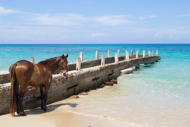 Best Honeymoon Resorts - Jamaican