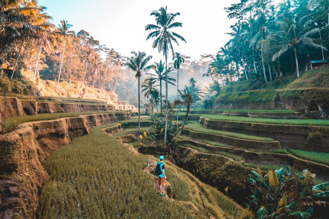 bali indonesia - things to do in bali