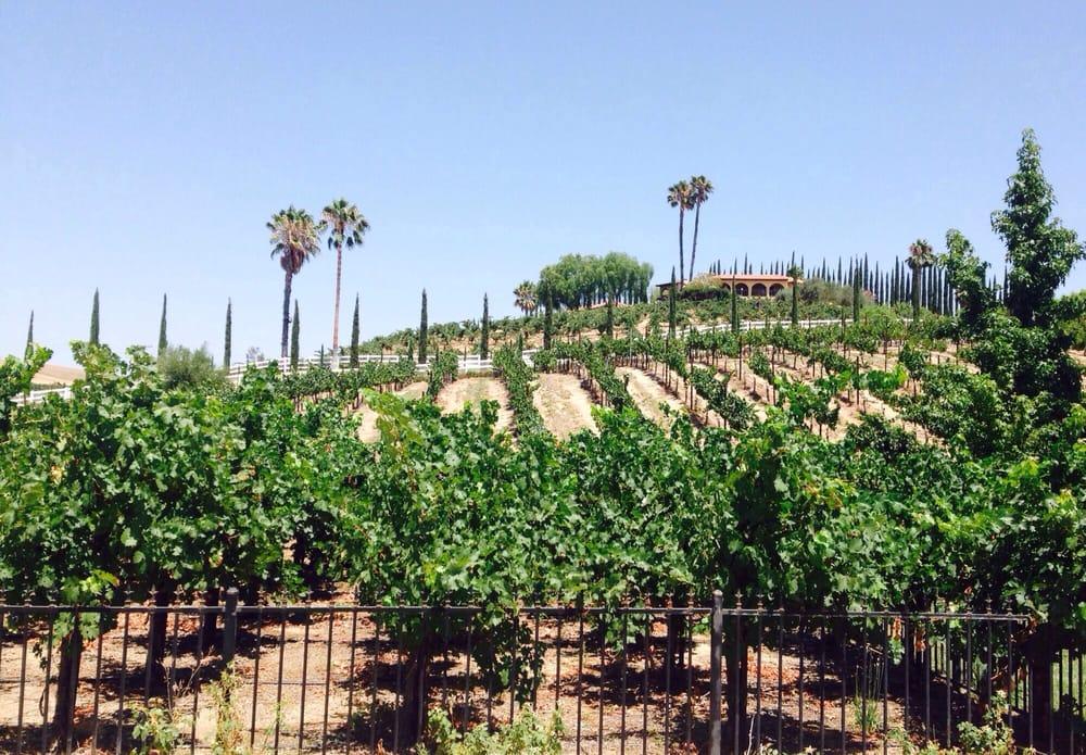 best wineries in Temecula - Baily Vineyard & Winery