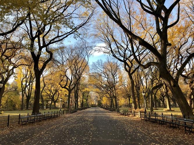 romantic getaways in NY - NeaCity Island