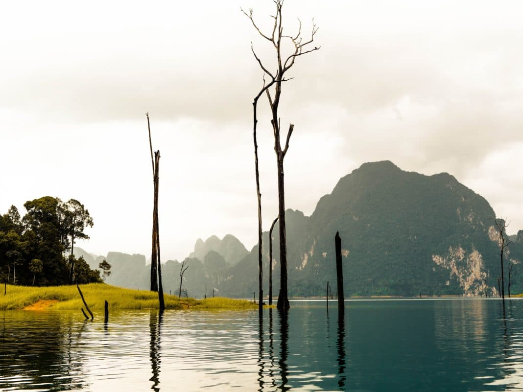 best places to visit in thailand - Khao Yai National Park