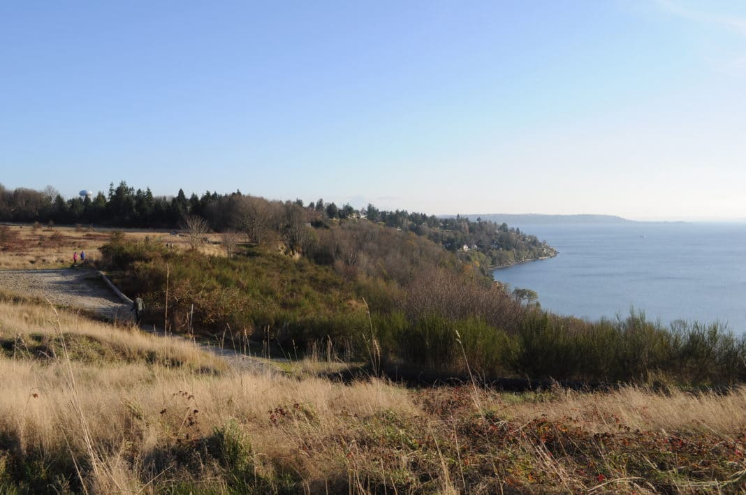 hikes outside of seattle - Discovery Park