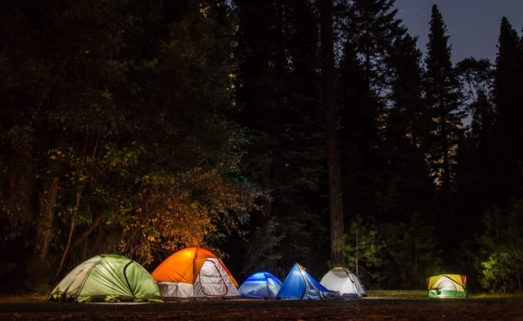 camping tents with lights inside in the middle of the woods
