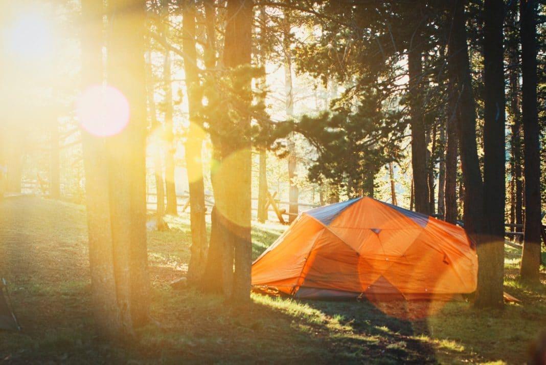 best family tent - tent poles